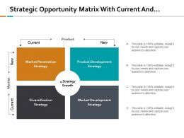 Strategic Opportunity Matrix With Current And New Position
