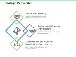 Strategic Partnership Powerpoint Slide Presentation Guidelines