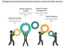 Strategic Partnership Showing Partner Selection Criteria And Partner Network
