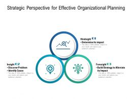 Strategic Perspective For Effective Organizational Planning