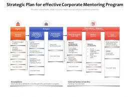 Strategic Plan For Effective Corporate Mentoring Program
