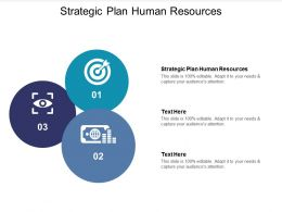 Strategic Plan Human Resources Ppt Powerpoint Presentation Infographics Information Cpb