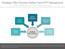 Strategic Plan Process Gather Facts Ppt Background