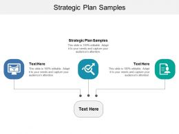 Strategic Plan Samples Ppt Powerpoint Presentation File Demonstration Cpb