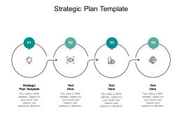 Strategic Plan Template Ppt Powerpoint Presentation Layouts Diagrams Cpb