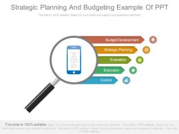 Strategic Planning And Budgeting Example Of Ppt