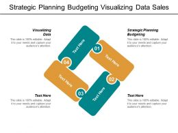 Strategic Planning Budgeting Visualizing Data Sales Strategy Management Cpb