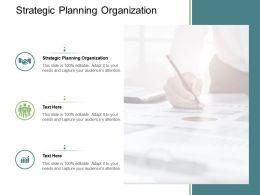 Strategic Planning Organization Ppt Powerpoint Presentation Show Themes Cpb