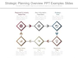 Strategic Planning Overview Ppt Examples Slides