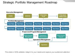 Strategic Portfolio Management Roadmap Powerpoint Show