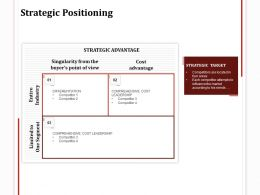 Strategic Positioning Segment Ppt Powerpoint Presentation Pictures Elements
