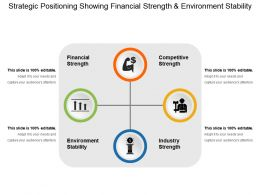 Strategic Positioning Showing Financial Strength And Environment Stability