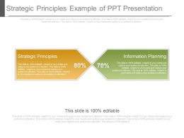 Strategic Principles Example Of Ppt Presentation