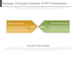 Strategic Principles Example Of Ppt Presentation