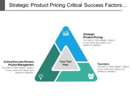 Strategic Product Pricing Critical Success Factors Project Management Cpb