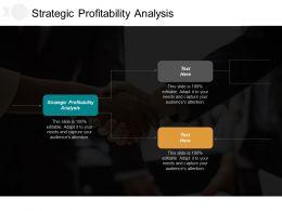 Strategic Profitability Analysis Ppt Powerpoint Presentation Portfolio Shapes Cpb
