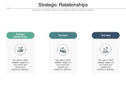 Strategic Relationships Ppt Powerpoint Presentation Outline Shapes Cpb