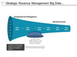 Strategic Revenue Management Big Data Analysis Risk Analytics Tools Cpb