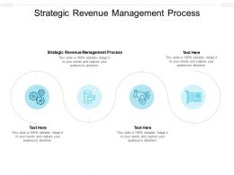 Strategic Revenue Management Process Ppt Powerpoint Presentation Ideas Example Cpb