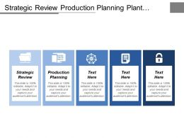 Strategic Review Production Planning Plant Maintenance Financial Accounting