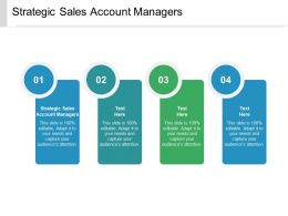 Strategic Sales Account Managers Ppt Powerpoint Presentation Pictures Skills Cpb