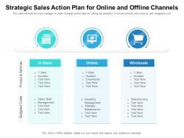 Strategic Sales Action Plan For Online And Offline Channels