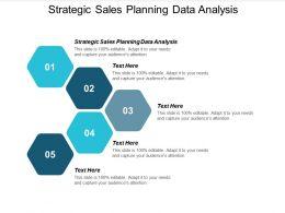 Strategic Sales Planning Data Analysis Ppt Powerpoint Presentation Summary Example File Cpb