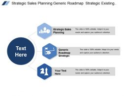 Strategic Sales Planning Generic Roadmap Strategic Existing Sales Sales Pipeline