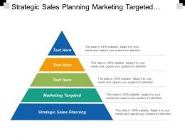 Strategic Sales Planning Marketing Targeted Wealth Management Sales Process Cpb