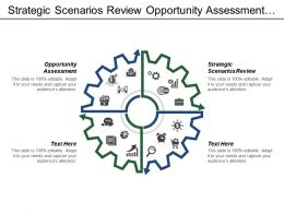 Strategic Scenarios Review Opportunity Assessment Resource Allocation Consumer Insight