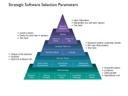 Strategic Software Selection Parameters