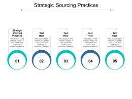 Strategic Sourcing Practices Ppt Powerpoint Presentation Professional Templates Cpb