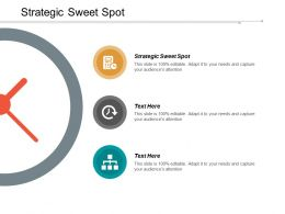 Strategic Sweet Spot Ppt Powerpoint Presentation Inspiration Format Cpb