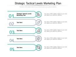 Strategic Tactical Levels Marketing Plan Ppt Powerpoint Presentation Professional Cpb