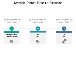 Strategic Tactical Planning Examples Ppt Powerpoint Presentation Styles Cpb