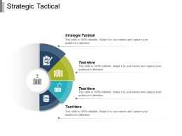 Strategic Tactical Ppt Powerpoint Presentation Infographic Template Elements Cpb