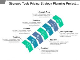 Strategic Tools Pricing Strategy Planning Project Business Analysis Cpb