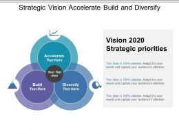 Strategic Vision Accelerate Build And Diversify