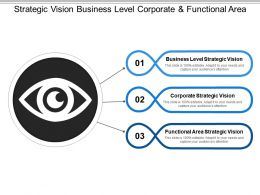 Strategic Vision Business Level Corporate And Functional Area