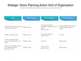 Strategic Vision Planning Action Grid Of Organisation