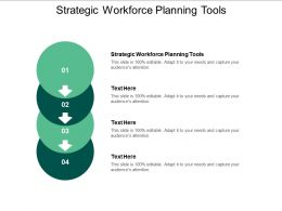 Strategic Workforce Planning Tools Ppt Powerpoint Presentation Professional Example Topics Cpb