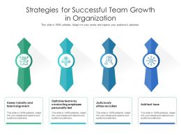 Strategies For Successful Team Growth In Organization