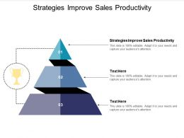 Strategies Improve Sales Productivity Ppt Powerpoint Presentation Designs Cpb