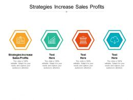 Strategies Increase Sales Profits Ppt Powerpoint Presentation Show Inspiration Cpb