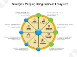 Strategies Mapping Using Business Ecosystem
