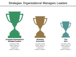 Strategies Organizational Managers Leaders Marketing Automation E Commerce Optimization Cpb