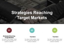 Strategies Reaching Target Markets Ppt Powerpoint Presentation Outline Elements Cpb