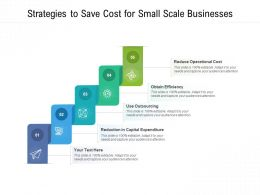 Strategies To Save Cost For Small Scale Businesses