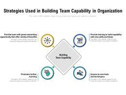 Strategies Used In Building Team Capability In Organization