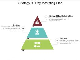 Strategy 90 Day Marketing Plan Ppt Powerpoint Presentation Model Example Introduction Cpb